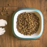 dog-food-5168940_640