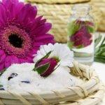 flower-3086596_640